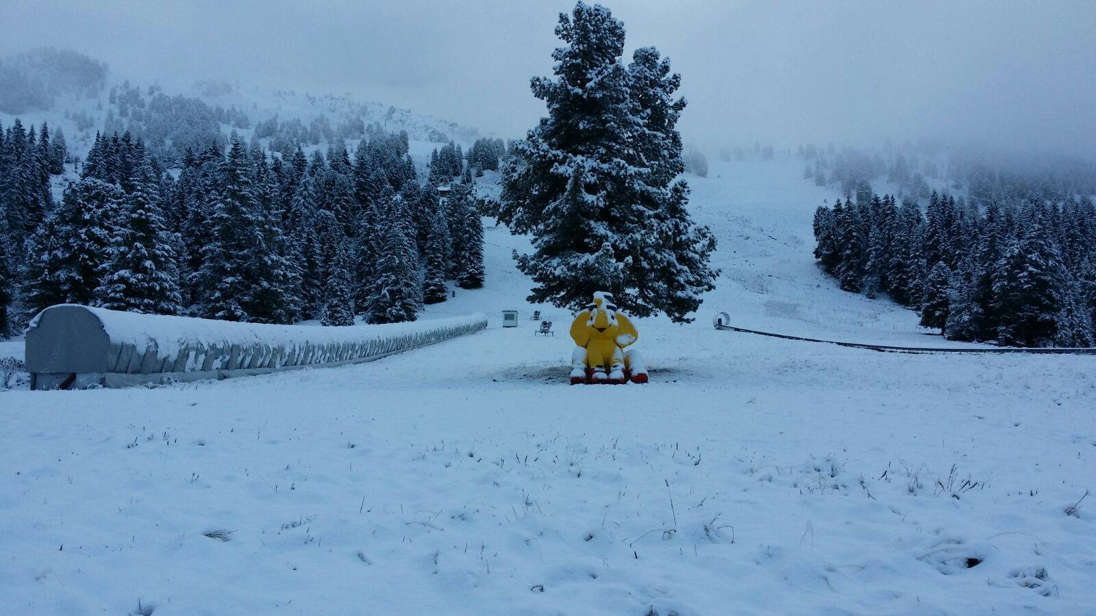 sneeuwupdate-vi