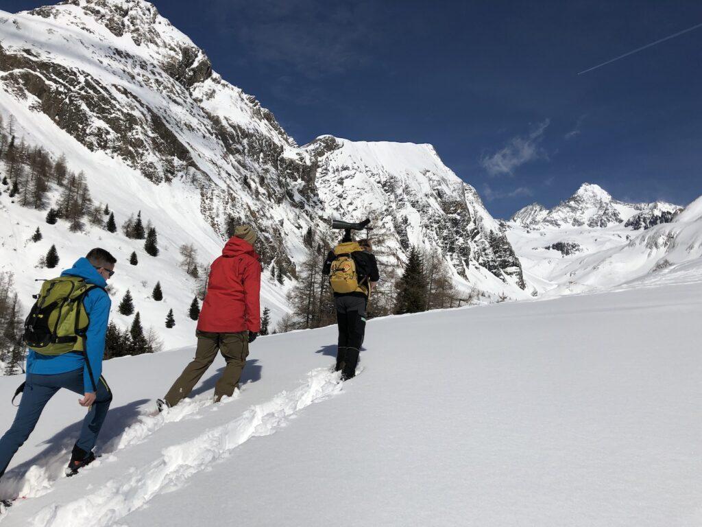 Sneeuwschoenwandelen in rustige skigebieden Oostenrijk