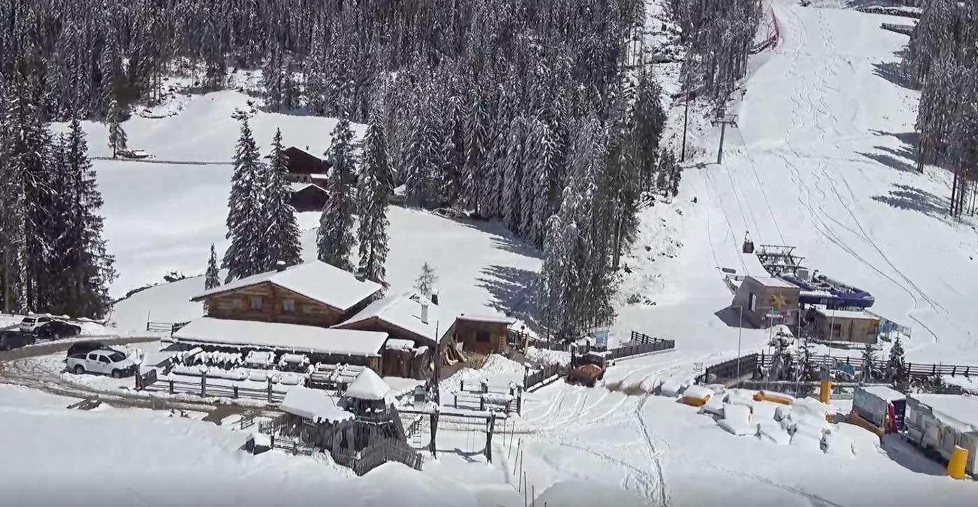 Besneeuwde bomen in Drei Zinnen Dolomites