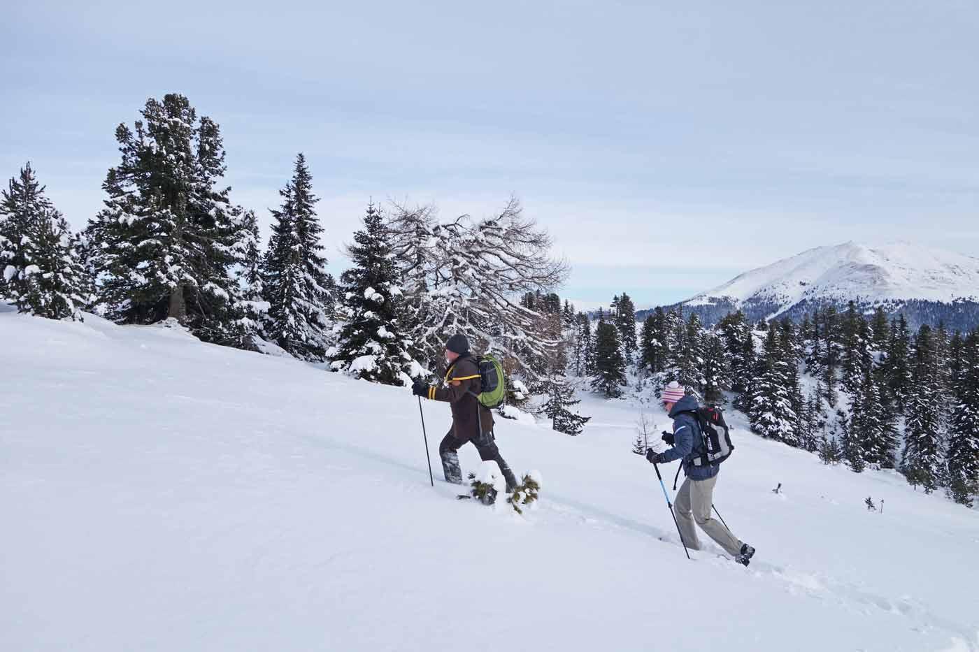 Sneeuwschoenwandelen op wintersport