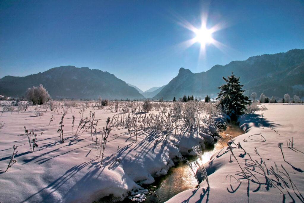 Natuur Ammergauer Alpen