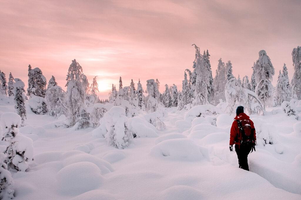 Sneeuwschoenwandeling door winters landschap
